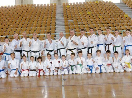 WP 35 560x416 - Musa: Përfitimet nga sporti i karatesë për fëmijët e moshës 6-11 vjeç