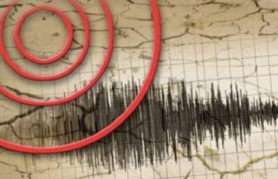 w 29 560x360 - Sizmologu kosovar paralajmëron ndërtuesit: Ka gjasa që në këto qytete të godasë tërmeti