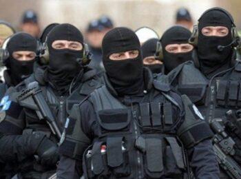 """w 15 350x260 - Realizohet operacioni """"Stuhia"""" për parandalimin e veprimtarive të ndryshme kriminale (VIDEO)"""