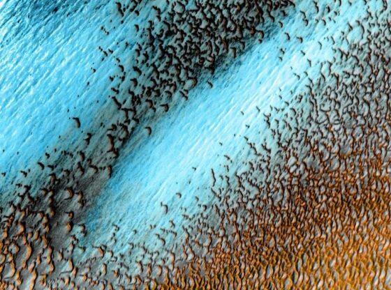 6072d3cf4943790018bb1cf7 e16182225488161 560x416 - Marsi bëhet blu, NASA publikon imazhin spektakolar