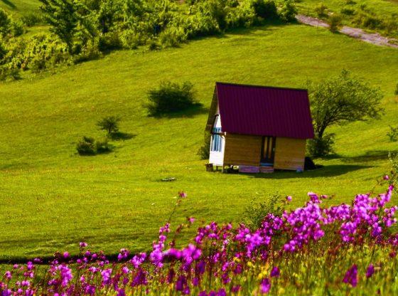 7be19311 76c8 4356 a8a9 2cea0f3e62e01 560x416 - Një fshat i bukur i Ferizajt, një parajsë në vete