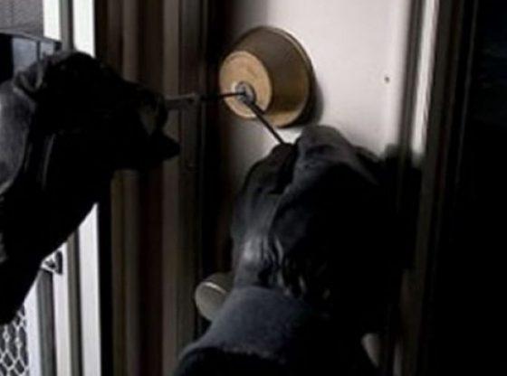 auto vjedhje 880168 780x43916250400051 1 560x416 - Dy vjedhje brenda pak orëve në Ferizaj e Shtime